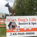Dog Training Near Wixom, Michigan